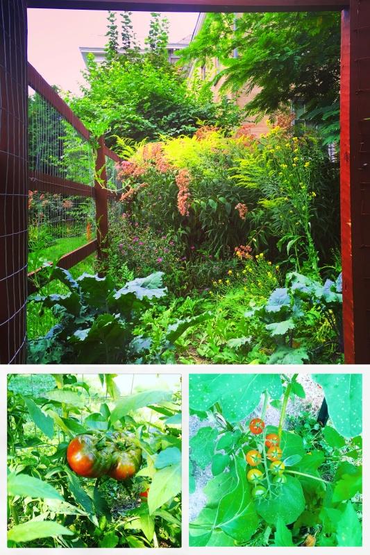 Garden Collage copy