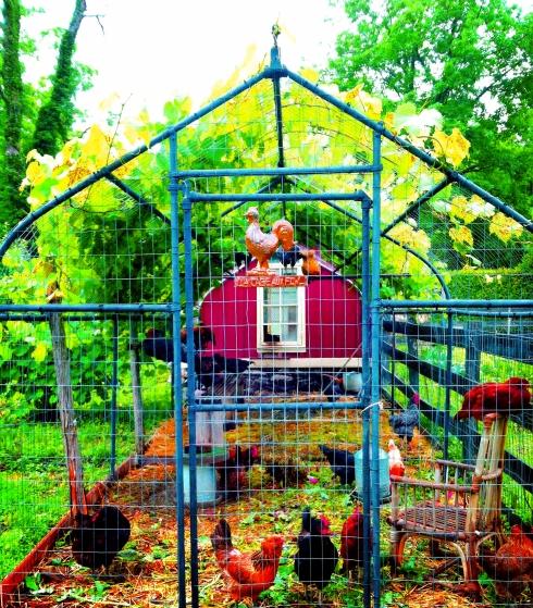 La Cage Aux Fowl Insta